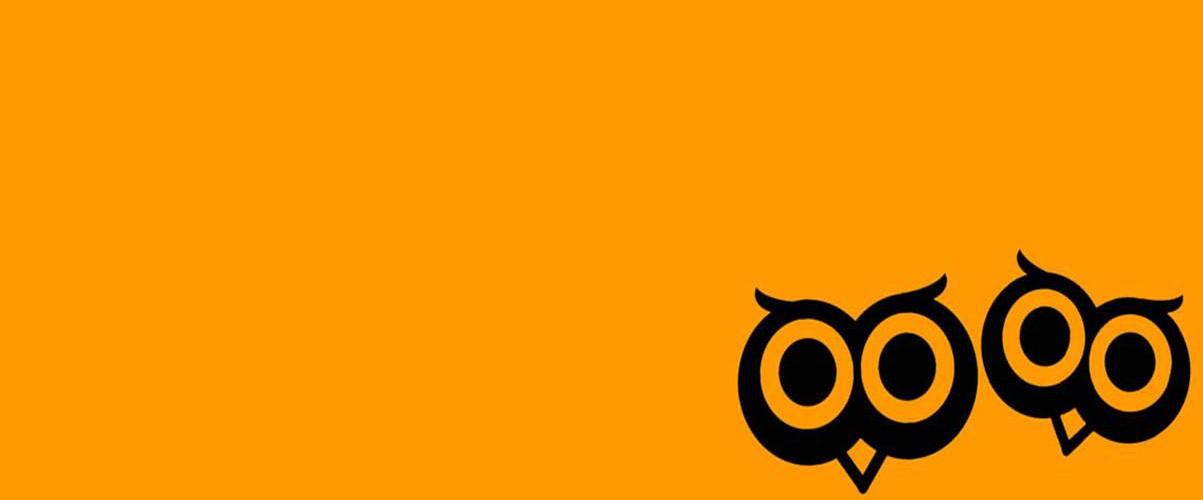 Contact 2 Orange Owls